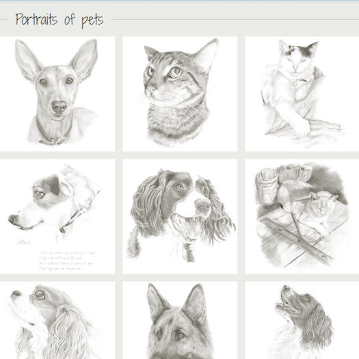 Portraits of pets