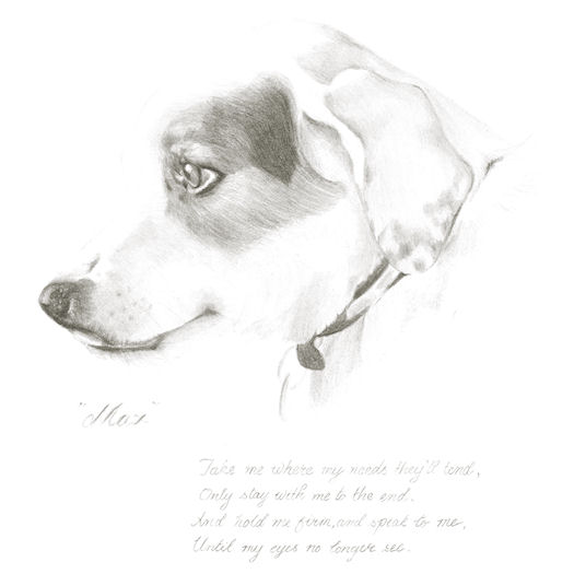 Pencil portrait of Max